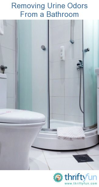 This Guide Is About Removing Urine Odors From A Bathroom. Although The  Lavatory Looks Clean