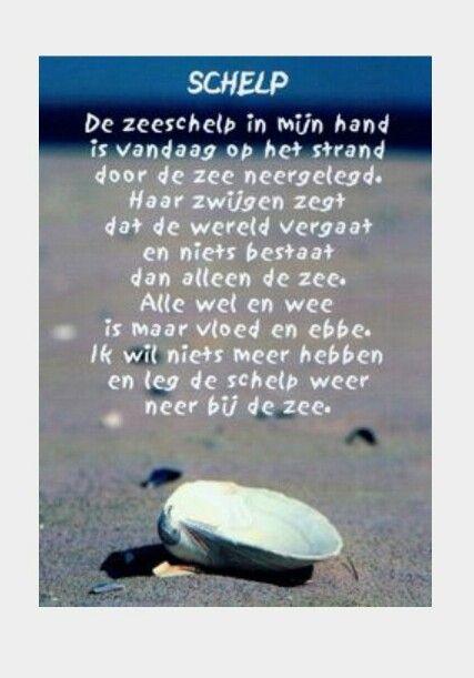 Schelp Van A Roland Holst Gedichten Schrijver En Op Het