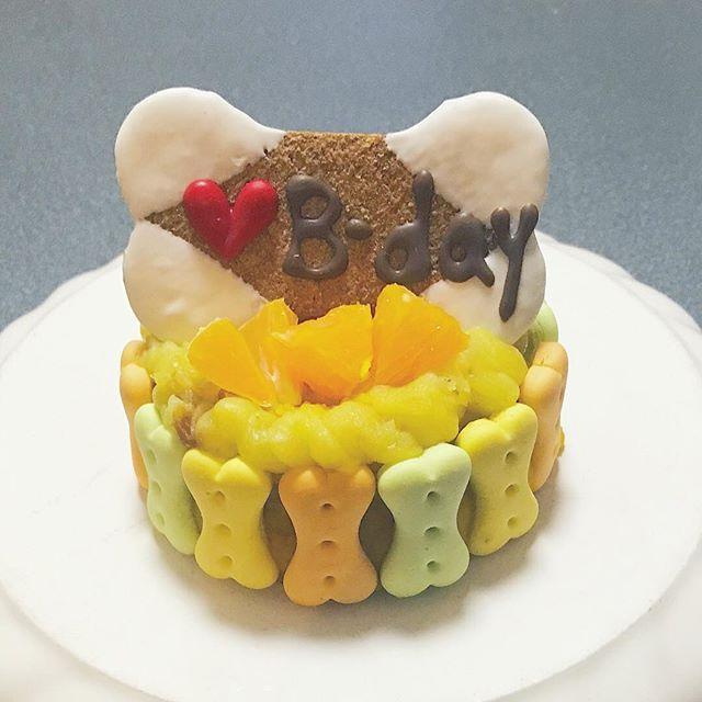 ペット誕生日ケーキ おしゃれまとめの人気アイデア Pinterest Iatom Hsu ケーキ 作り方 手作りケーキ ケーキ