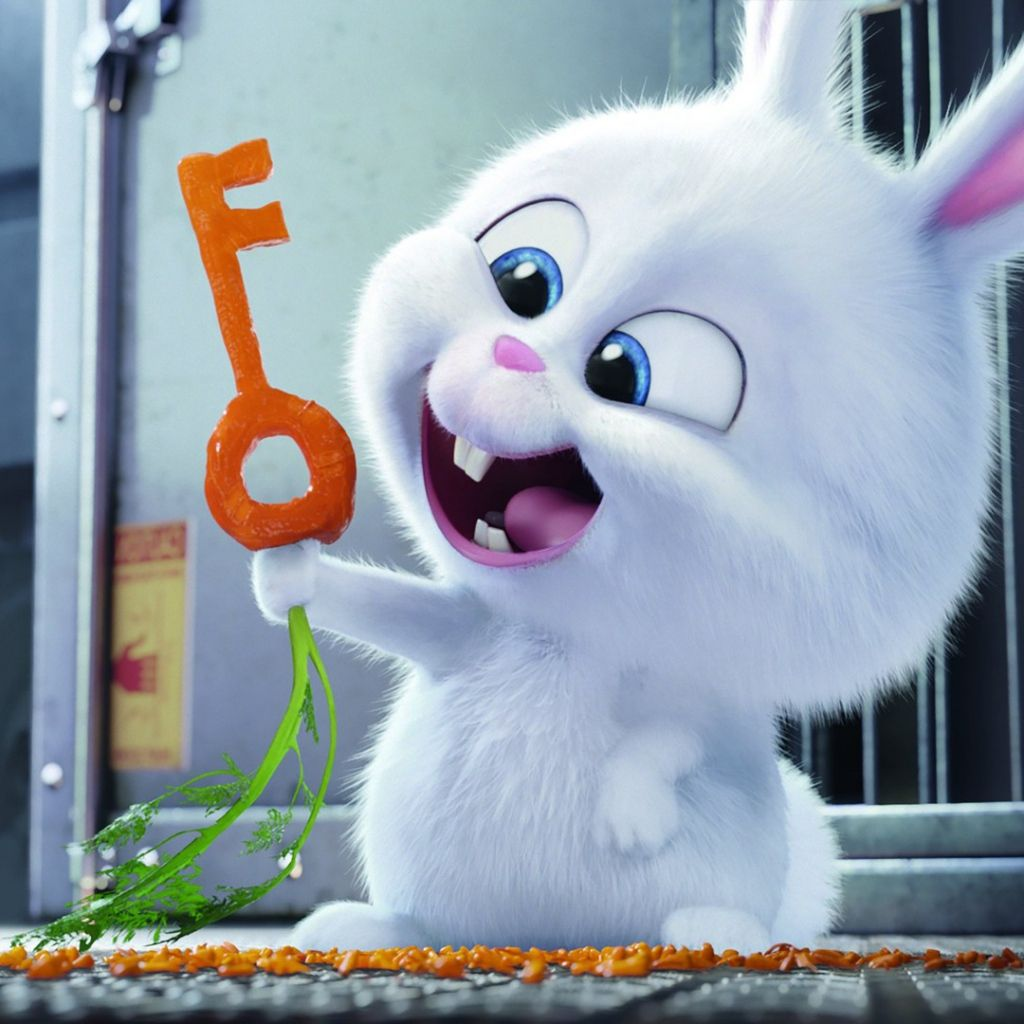 The Secret Life Of Pets 2016 Rabbit Snowball Cute Lovely Rabbit Movie Film Thesecretlifeofpets In 2020 Bunny Wallpaper Rabbit Wallpaper Cute Bunny Cartoon