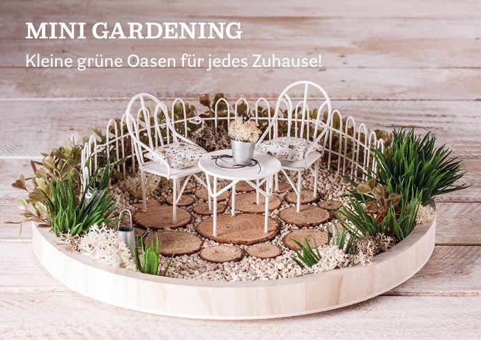 mini gardening kleine gr ne oasen f r jedes zuhause mini gardening pinterest mini. Black Bedroom Furniture Sets. Home Design Ideas
