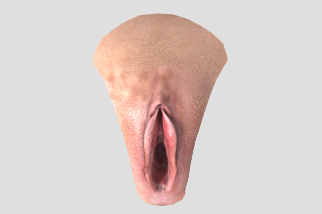 Ist intercourse picture of vagina Caprice fine