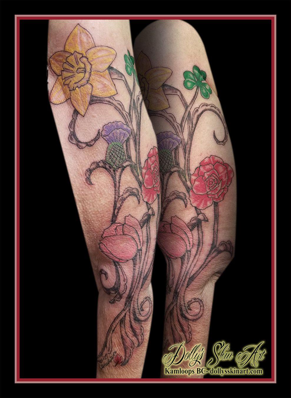 542d2f300 ireland shamrock england tudor rose scotland scottish thistle wales  daffodil holland tulip canada maple leaf colour