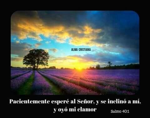 Esperar a Dios no es perder el tiempo!  ✿ Amen! ☆~✿ ☆҉ ‿✿ ~ ✿⁀☆҉✿~☆