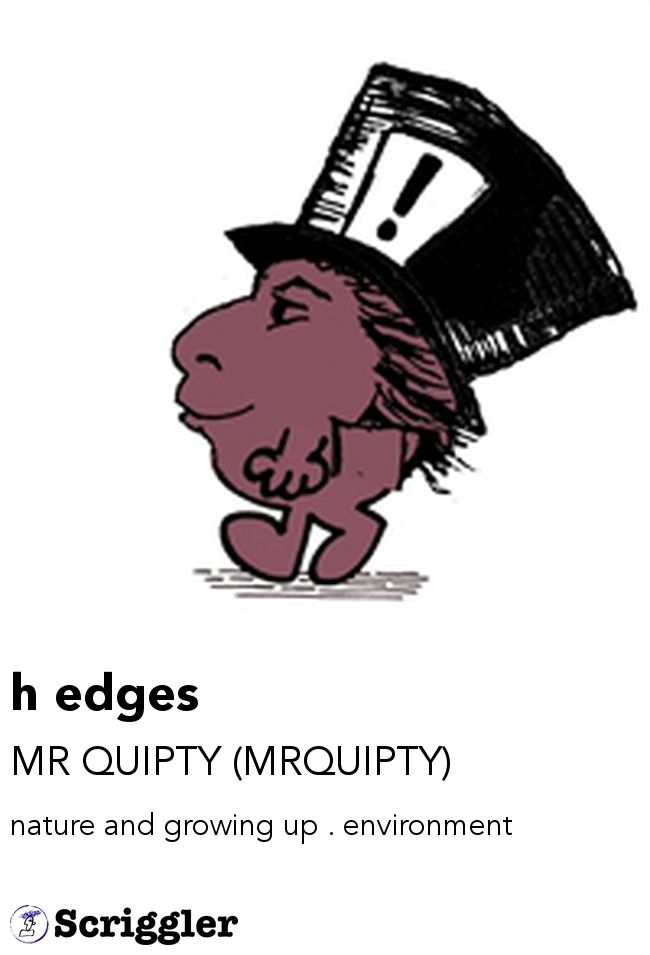 h edges by MR QUIPTY (MRQUIPTY) https://scriggler.com/detailPost/story/41652