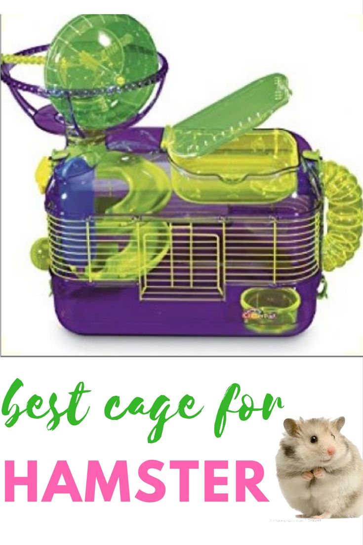 Best Hamster Cage Hamster Tubes Cage Accessories Exercise Gerbil