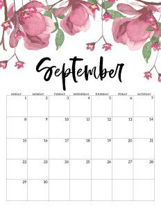 Printable Calendar 2020 And 2016 Free Printable Calendar 2019   Floral | Printable planner
