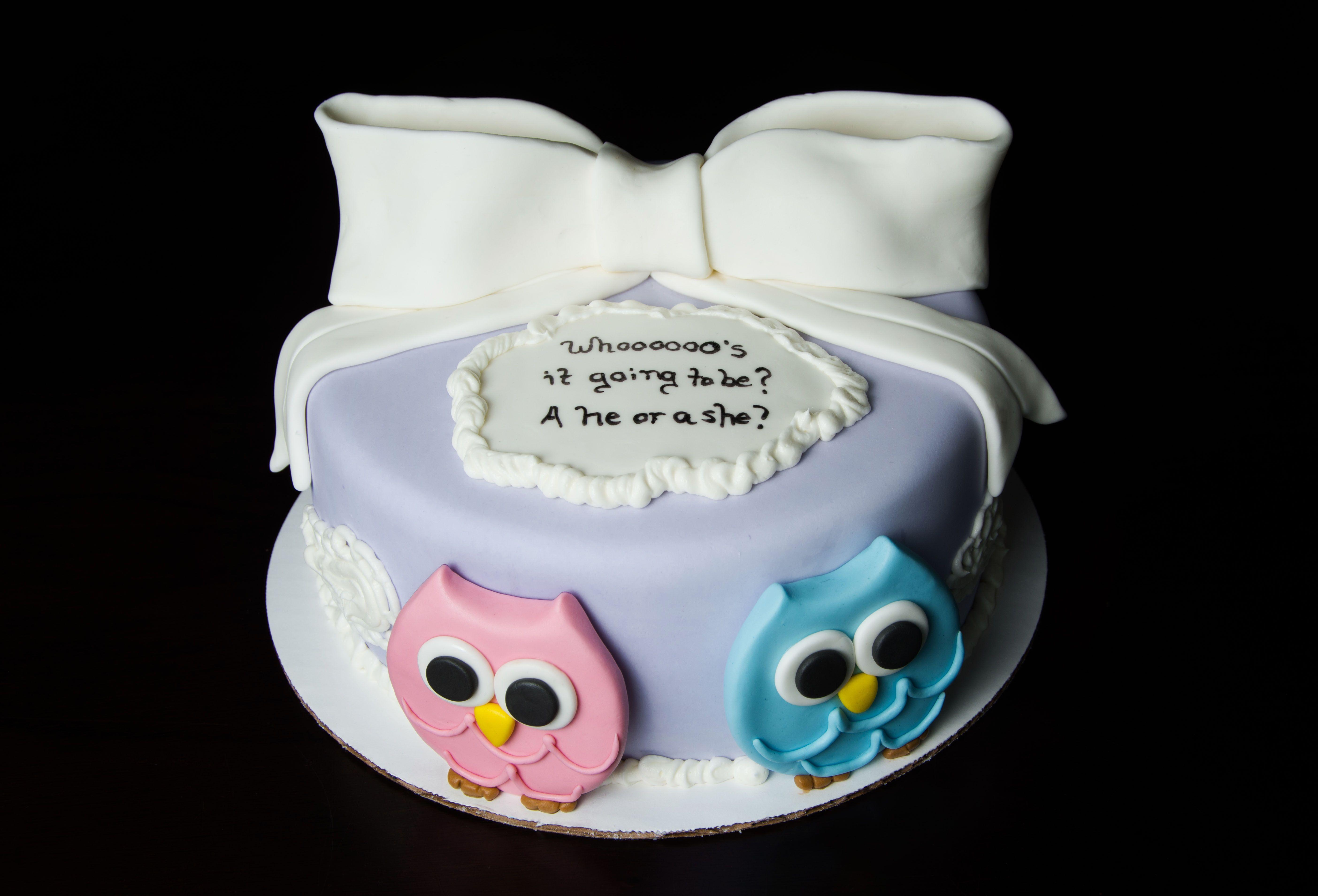 Gender Reveal Cake Baby Gender Reveal Cake Owl Themed Gender