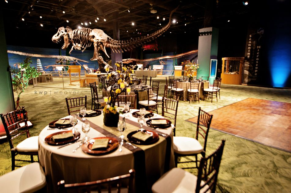 Dino Diggs Wedding Reception A Chair Affair Orlando Science Center Kristen Weaver Photography
