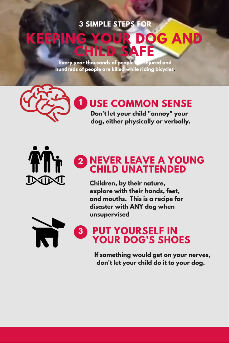 A huge majority of dog bites occur in children under the age of 10. There are many reasons for this, but this video shows how poor parenting can contribute.