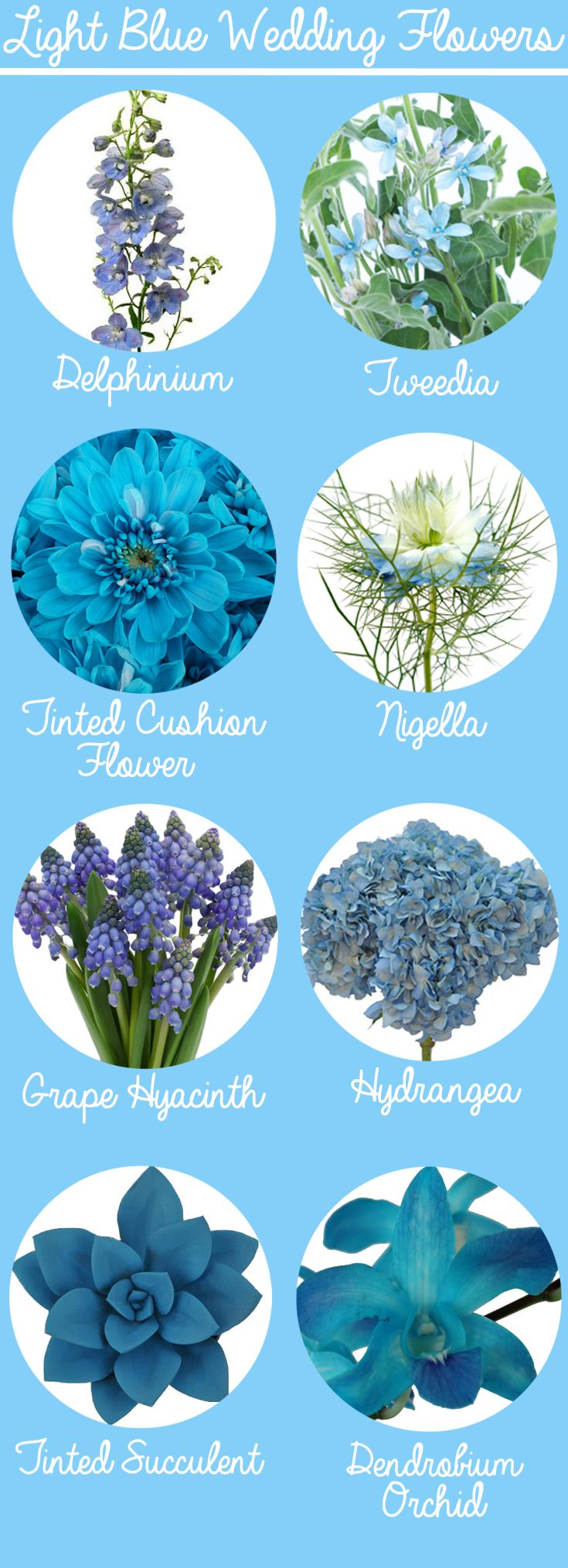 Shop For Flowers By Color At Fiftyflowers Com Blue Wedding