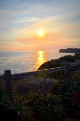 Idea #5 for a healthy New Year and wellness visit to Terranea Resort: Slow down and just take it all in.