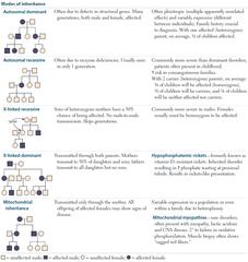 Recessive Trait Pedigree Chart Solutions Google Search Pedigree Chart Teaching Chart