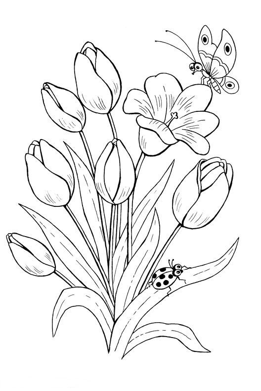 Pin by Richard Pompizzi on Diy t Color Coloring pages