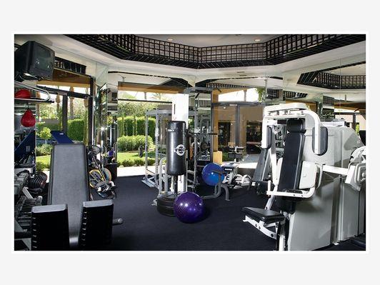 Luxury home gym - Home and Garden Design Idea\'s | Home Gyms ...