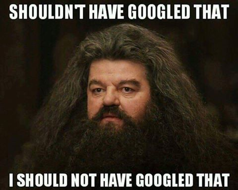 The Results Left Me Hagrid Harry Potter Memes Hilarious Funny Pictures Me As A Girlfriend