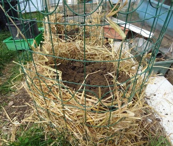 tour de pommes de terre jardin pinterest tour am nagement et jardinage. Black Bedroom Furniture Sets. Home Design Ideas