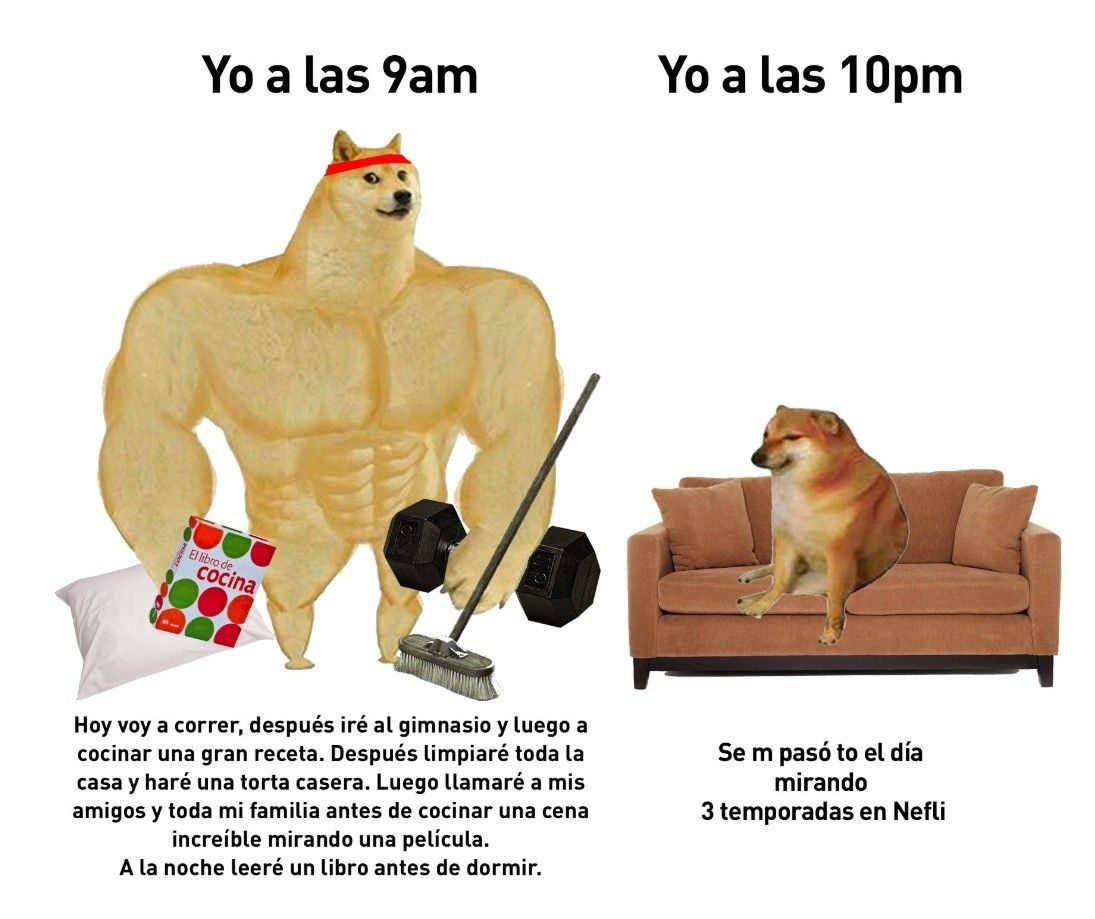 Pin De Santiago Brenes En De Todo Un Poco Memes Divertidos Meme Divertido Memes Graciosos