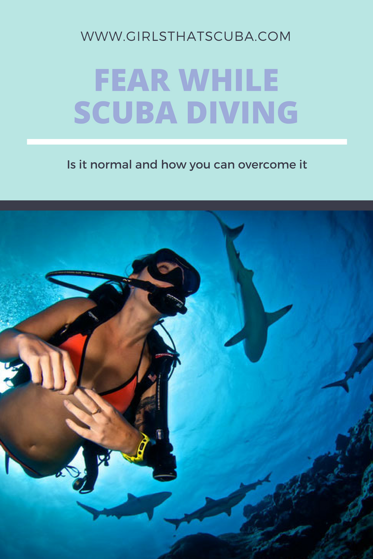 Fear While Scuba Diving Is It Normal And How You Can Overcome It Scuba Diving Quotes Learn To Scuba Dive Scuba Diving Photography