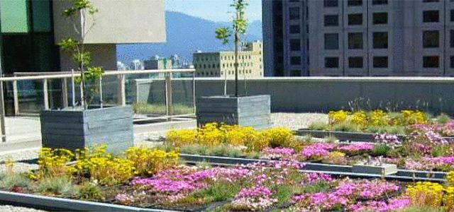 Lightweight Soil Is Designed For Rooftop Urban Gardens Urban Garden Rooftop Garden Green Roof Installation