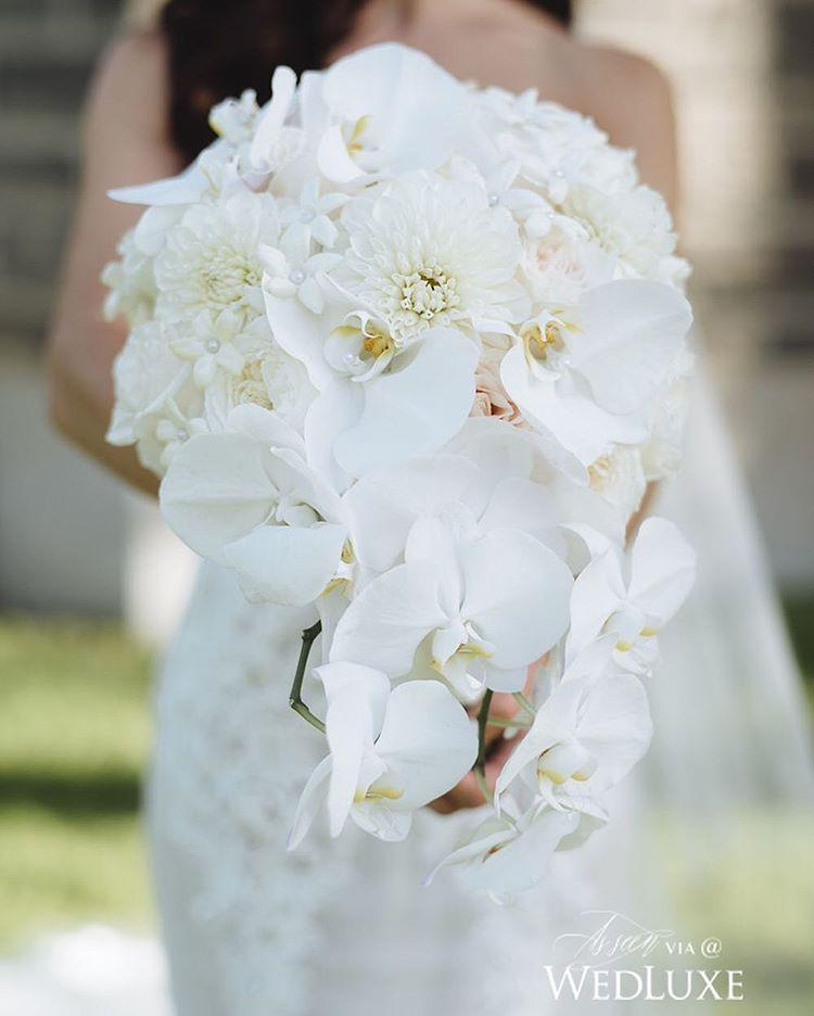 Posh Cascading Wedding Bouquet Comprised Of White Dahlias Stephanotis Phalaenopsis Orchids