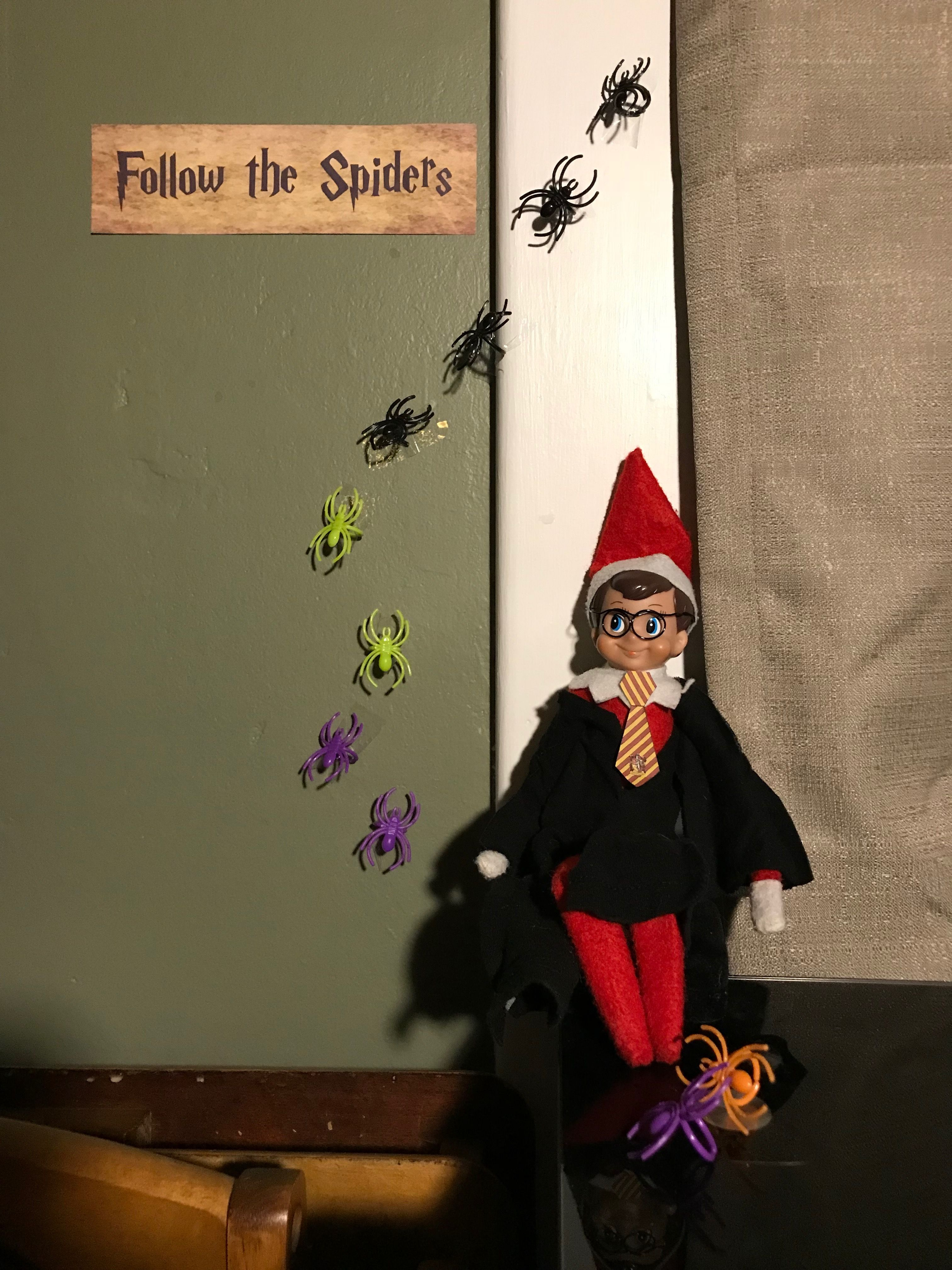 Follow the Spiders | Our Harry Potter Elf on the Shelf | Pinterest ...