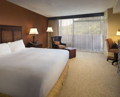 The Park Vista - a DoubleTree by Hilton Hotel - Family Suite Gatlinburg Tennessee