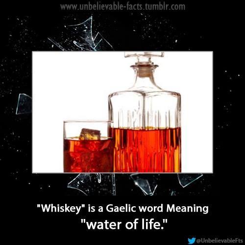 Random Whiskey Fact