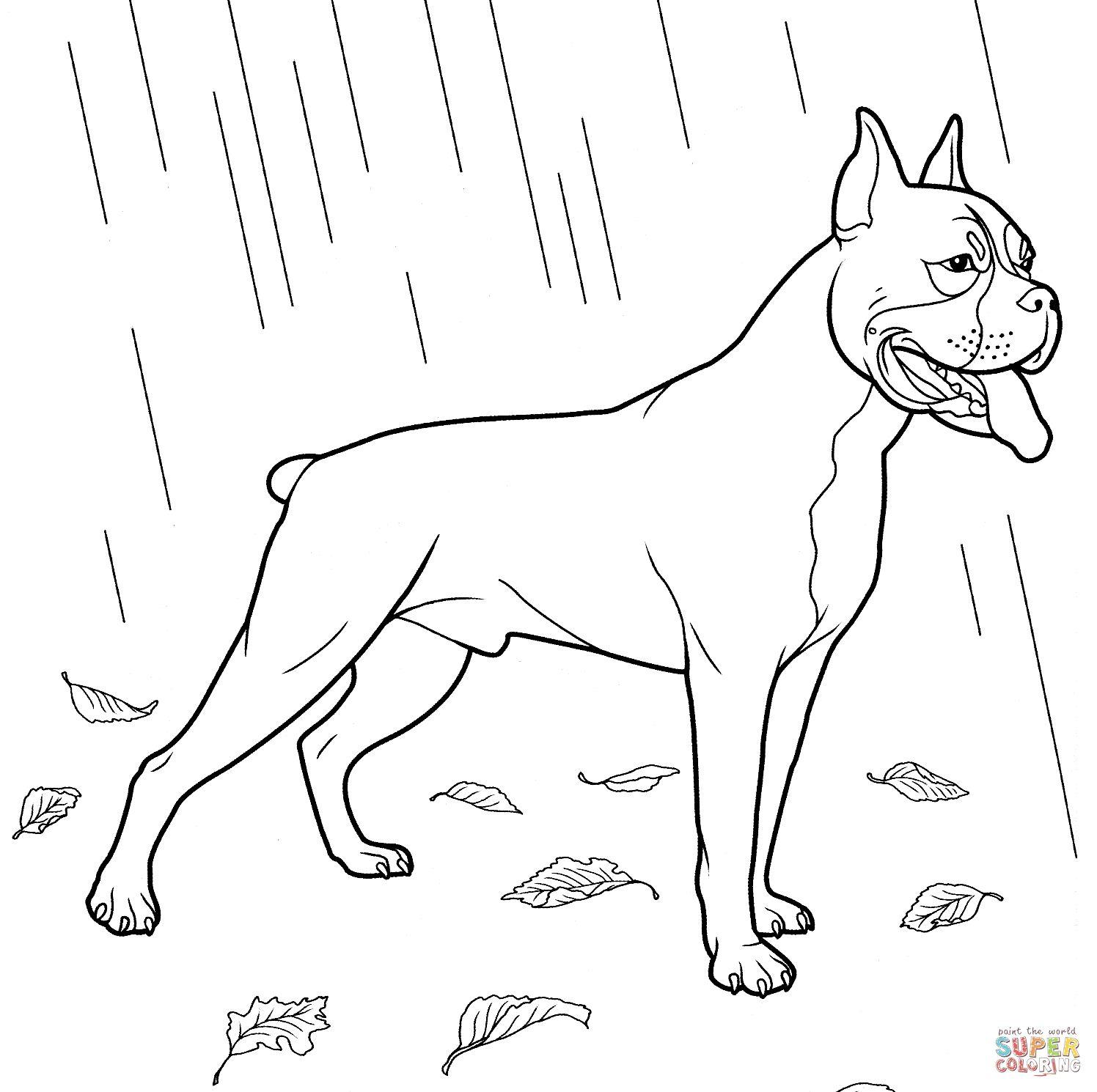 Dog Coloring Pages | Forcoloringpages.com | PSI | Pinterest