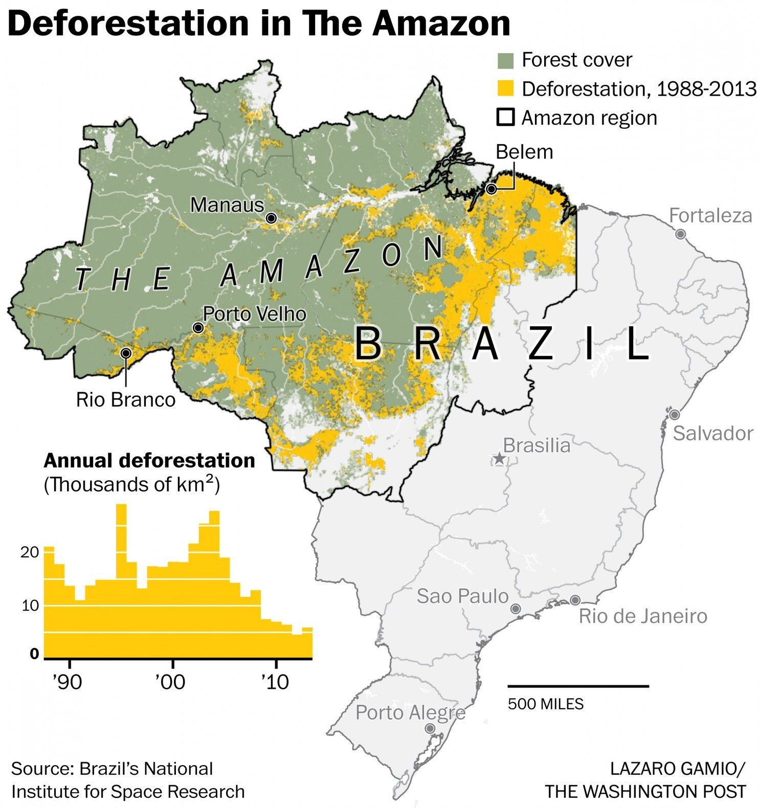 Deforestation Of The Amazon Rainforest And Atlantic Forest In