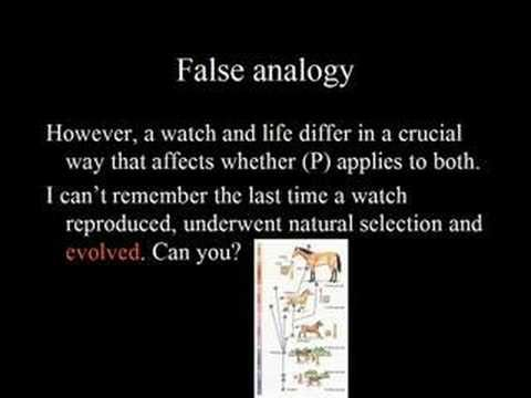 003 False Analogy Logical fallacies, How to apply, The last time
