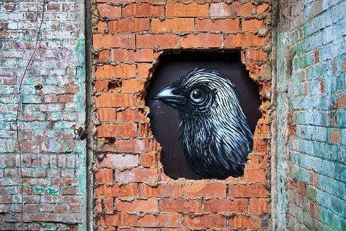 ROA love this. #roa http://www.widewalls.ch/artist/roa/