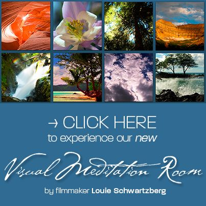 Relax, meditate & experience our NEW Visual Meditation Room | By Louie Schwartzberg, award-winning filmmaker @Moving Art by Louie Schwartzberg | Organic Spa Magazine