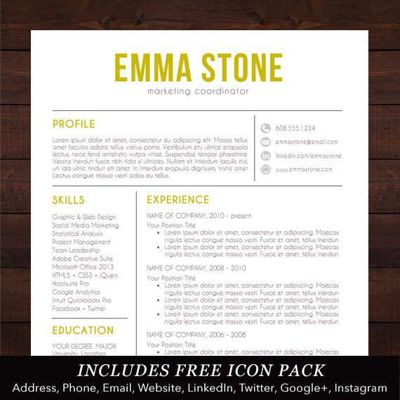 Resume Template Professional CV / Resume Design by ShineGraphics - word resume template mac