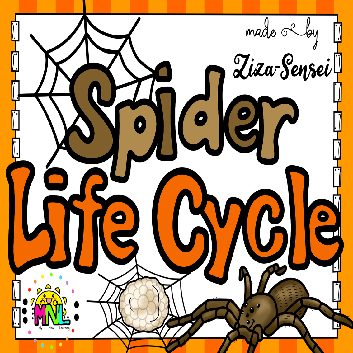 Spider Life Cycle Pack 1st 2nd Grade Flip Book Included Em