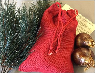 Paperwhites (6) in a Holiday Red Burlap Bag - Such a sweet and easy gift! 6 BIG bulbs with a set of instructions in a nice burlap gift bag! $9.95