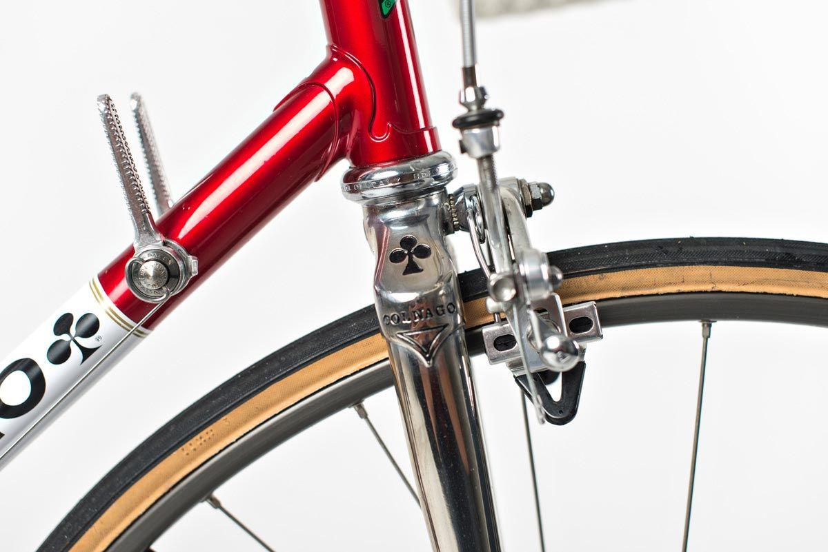 Scampi-Cicli