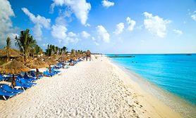 Cozumel Allegro Beach paradise!