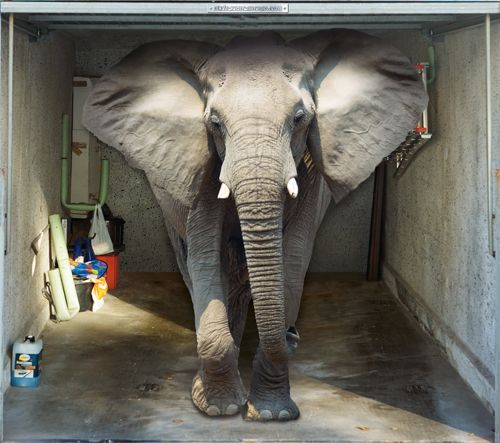 Style Your Garage Creative 3d Garage Doors Stickers: Elephant- Crazy Garage Door Illusions