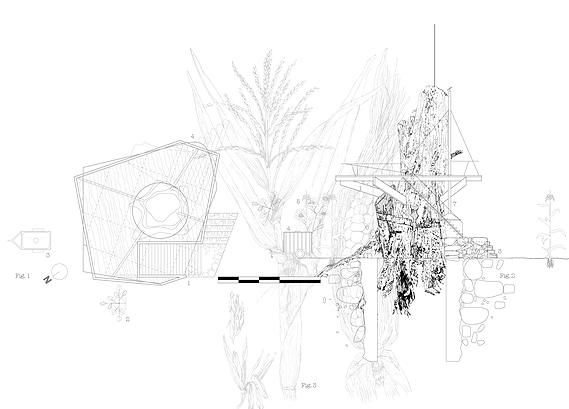 Line Drawings From D Models : Studio d tale safia and maxwell studiodtale