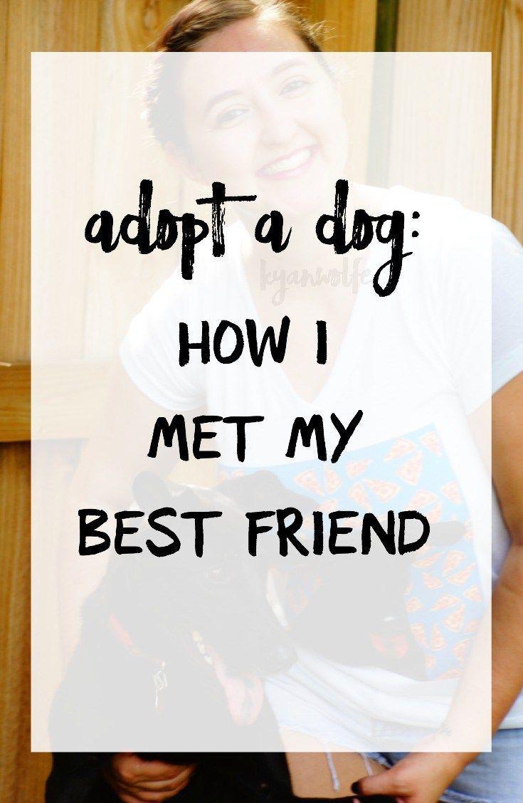 adopt a dog: how I met my best friend