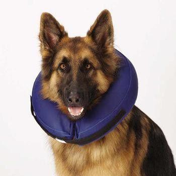 Health Inflatable Pet Collar Bite Resistant Pet Collars Big Dog