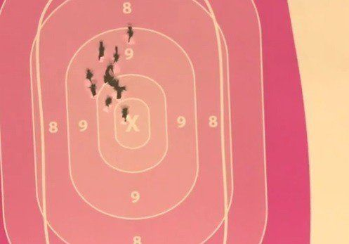 GUN SALES Surge Among GAYS, LESBIANS After #Pulse Club Massacre (Video)  Jim Hoft Jun 16th, 2016