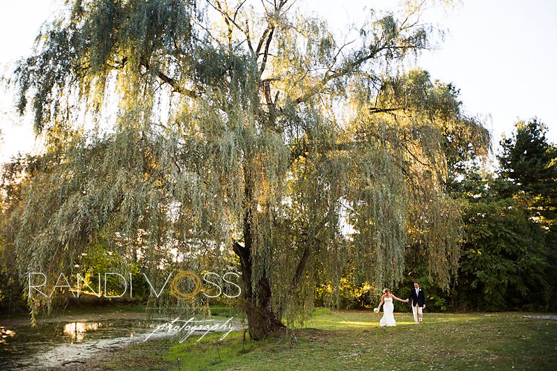 Weeping Willow At Succop Conservancy