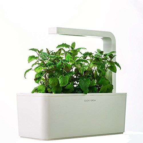 Indoor Herb Garden Kit Planter Led Grow Light Reusable Year Round No Pesticides Indoorherbgarden Herb Garden Kit Fresh Herbs Garden Indoor Herb Garden