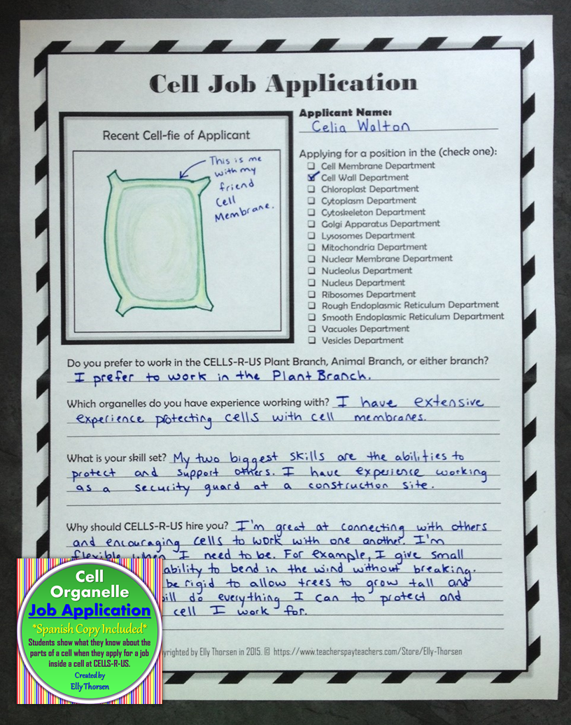Cell Organelle Job Application Assignment in English and Spanish ...