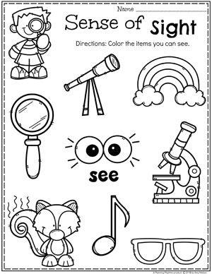 5 senses 3 5 winter senses preschool five senses preschool senses activities. Black Bedroom Furniture Sets. Home Design Ideas