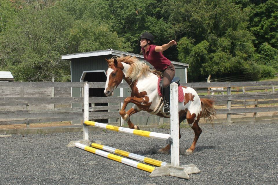 Day #81: After schooling in the arena with a bridle, Summer and Amado practice working without one.