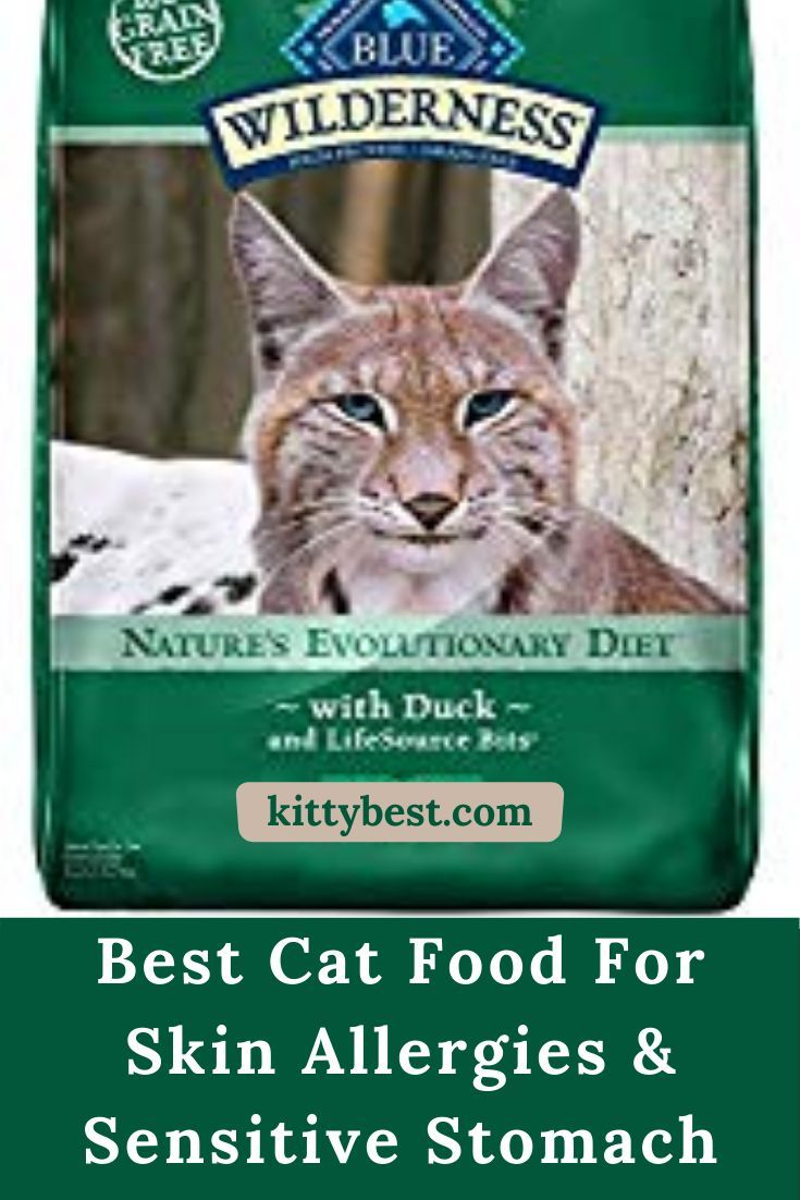 Best Cat Food For Skin Allergies Reviews And Complete Buying Guide Best Cat Food Cat Food Hypoallergenic Cat Food