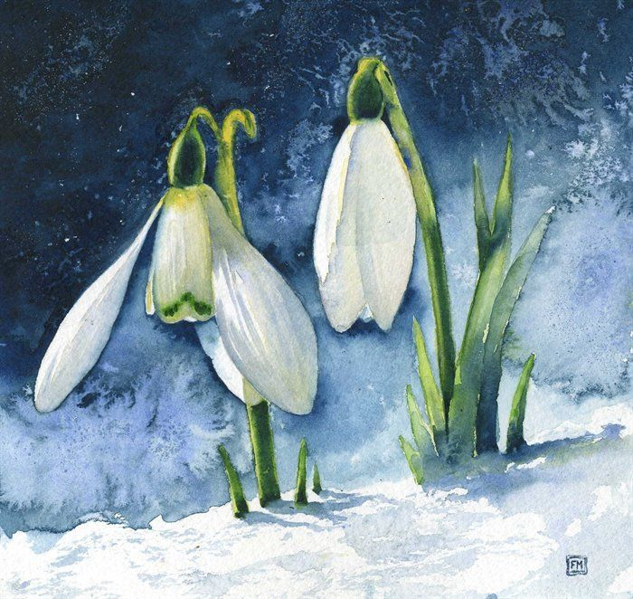 Landscape Snowdrops By Fran Mcgarry Floral Watercolor Watercolor Art Flower Painting